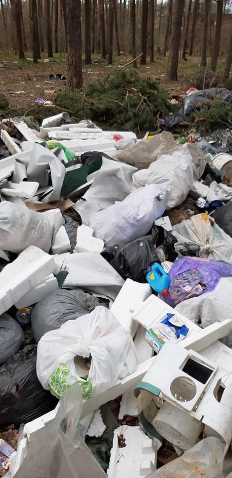 Буча_сміття2
